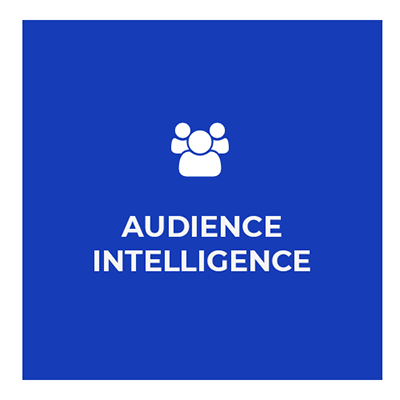 09 – Audience Intelligence